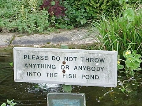 545-funny-sign.jpg